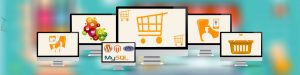 e-commerce-website-development