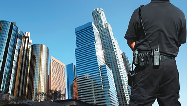 security services china