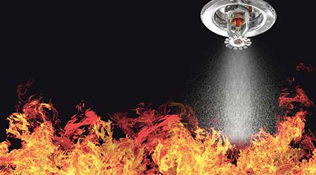 Important Things To Know About Professional Fire Sprinkler System Inspection